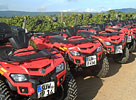 Quad- & off-road Events Mannheim & Rhein-Neckar [3/8]